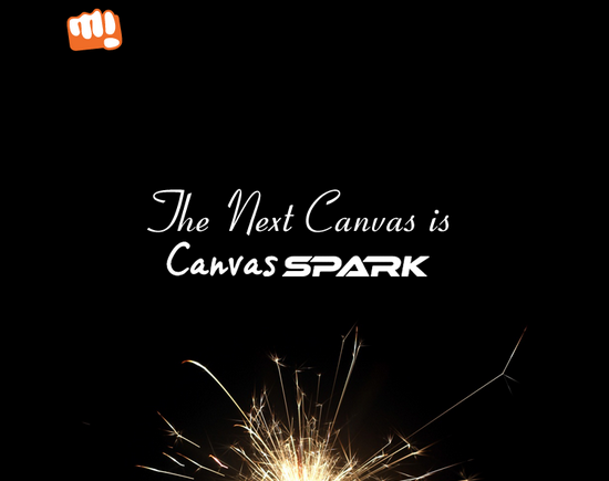 Micromax Canvas Spark (1)